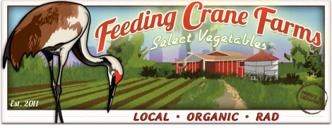 Feeding Crane Farms